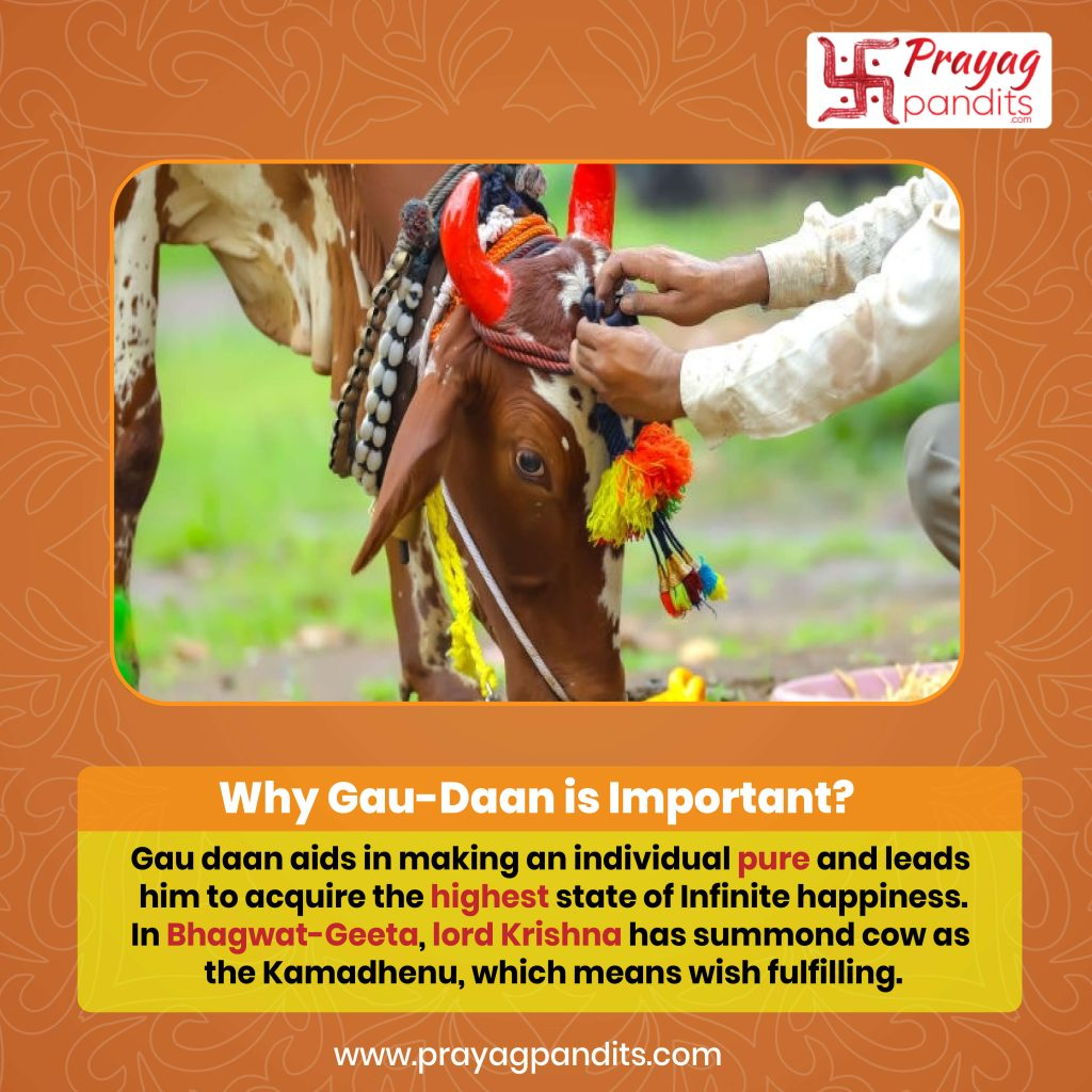 How to conduct Gau-Daan (Poojan of feeding a cow) and why is it important